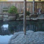 湯の峯荘 露天風呂