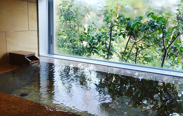 グランバッハ 森の見えるお風呂